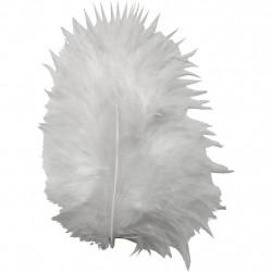 Πούπουλα-Φτερά χειροτεχνίας λευκά EFCO 10042xx 10gr