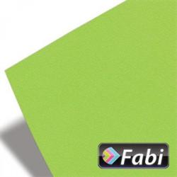 Χαρτόνι 50x70 FABI 220gr, λαχανί