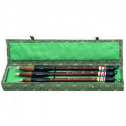 Calligraphy Brushes Set 577052
