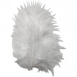 Feathers-Handicraft Wings...